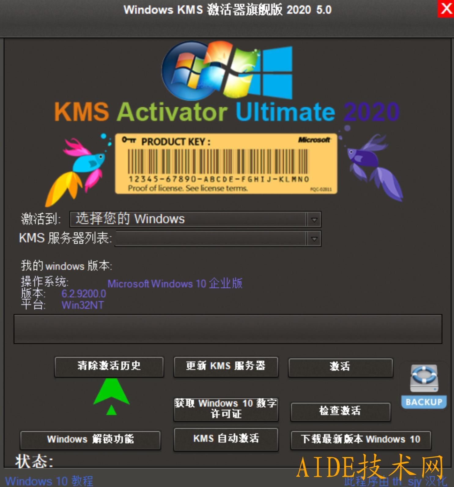 KMS旗舰版Windows全系统一键激活工具.zip
