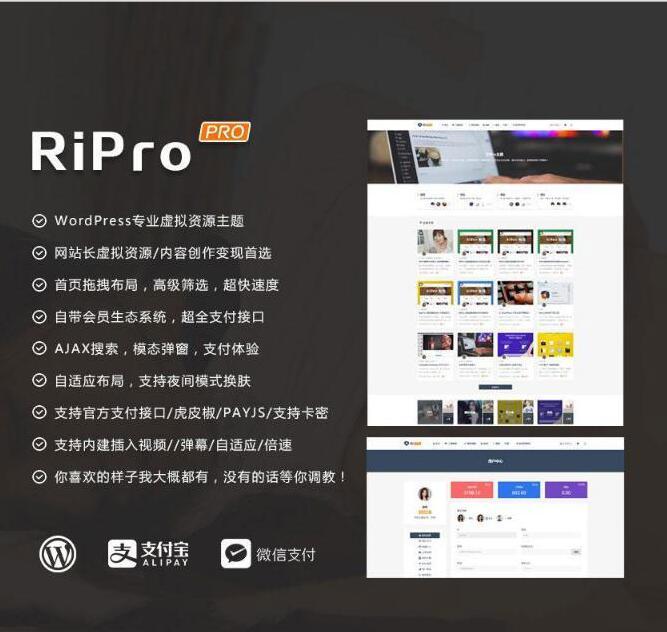 WordPress+RiPro主题破解版